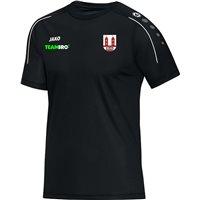 "SG Motor Wilsdruff T-Shirt ""Classico"", Senior"