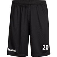 1. FFC Fortuna Dresden Short
