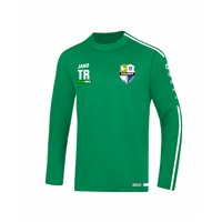 SG Striegistal Sweatshirt Junior