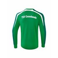 TSV Cossebaude Rückenaufdruck